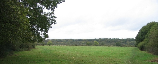 Croxley Common Moor